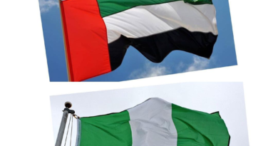 Nigerians in UAE cry out harsh treatment from the police!!! as Dubai suspends issuing of work Visa to Nigerians!!!